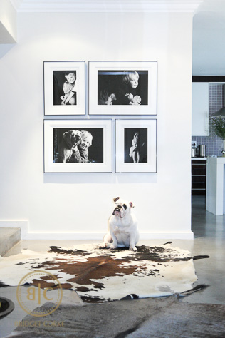 Wall Gallery of Family Photos